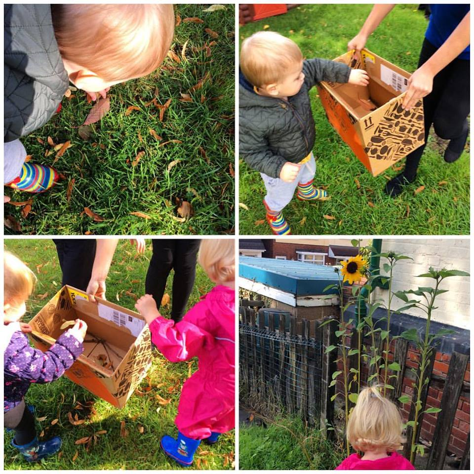 sensory activities at pines nursery
